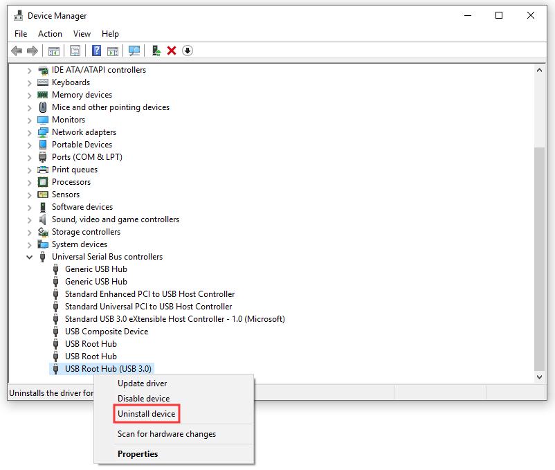 USB Root Hub 3.0