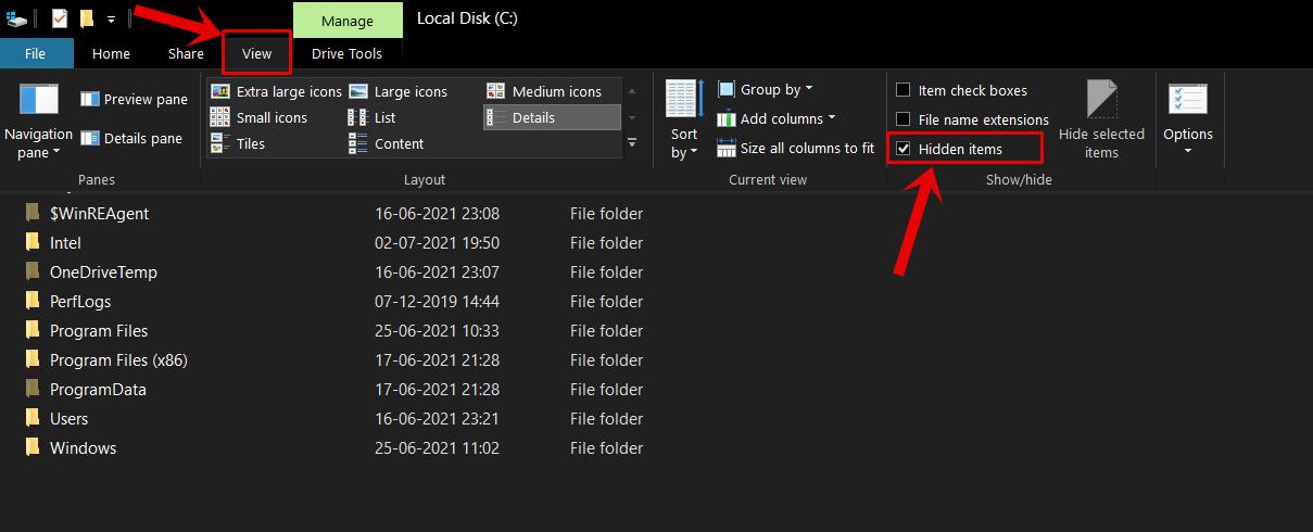 Windows 10 Show Hidden Files and Folders